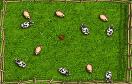 小雞爆炸修改版遊戲 / 小雞爆炸修改版 Game
