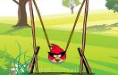 憤怒的小鳥吃雞蛋遊戲 / Angry Birds Get Eggs Game