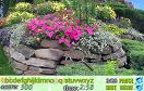 花園中隱藏的字母遊戲 / Hidden Alphabet Flower Garden Game