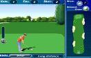 3D高爾夫精英遊戲 / 3D高爾夫精英 Game