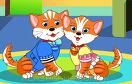 戀愛中的小貓咪遊戲 / 戀愛中的小貓咪 Game