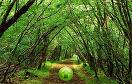 逃出謎題森林遊戲 / 逃出謎題森林 Game