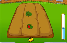 經營農場蔬果花園遊戲 / 經營農場蔬果花園 Game